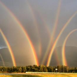 8 rainbows
